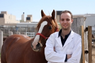 Picture of                                                                                                                                                                                                                                                                                                                                                                                                                                                                                                                                                                                    Western College of Veterinary Medicine